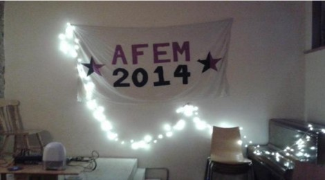 Help make AFem2014 accessible and international!